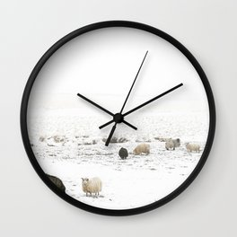Icelandic Sheep IIII Wall Clock