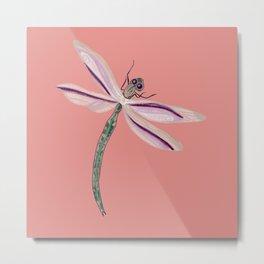 Succulent Hues Dragonfly Metal Print