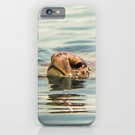 Head Above Water Loggerhead Turtle iPhone Case