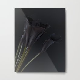 Dark Calla Lilies Metal Print