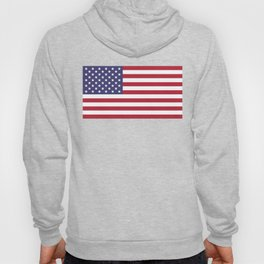 USA National Flag Authentic Scale G-spec 10:19 Hoody