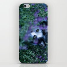 Just another kitty among the flowers iPhone & iPod Skin