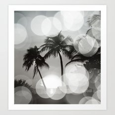 Tropical Beach Palms in Black & White Art Print