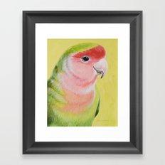 Peach-faced Lovebird Framed Art Print