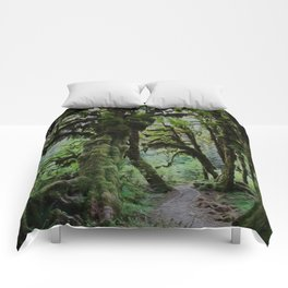 Maple Grove Comforters