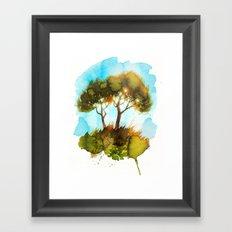 Pines in the Evening Sun Framed Art Print