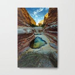 Ernst Canyon, Big Bend, Texas Metal Print
