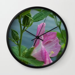 PINK MALLOW Wall Clock