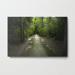 Mayan Path Metal Print