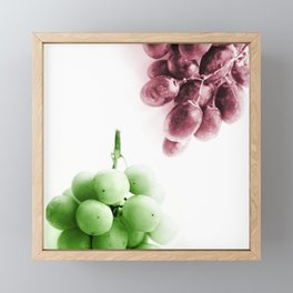 Grapes Framed Mini Art Print