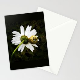 Daisy and snail Stationery Cards
