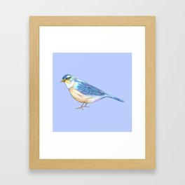 Bluebird of Happiness Framed Art Print