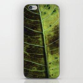 Leaf two iPhone Skin
