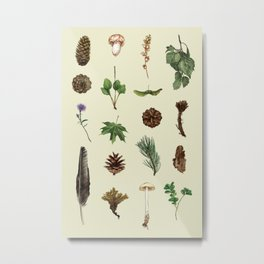 Finnish Nature Metal Print