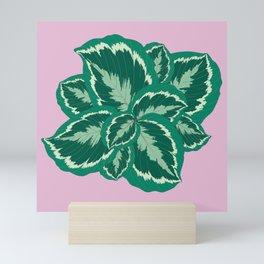 Tropical leaves of calathea Mini Art Print