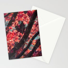 Abloom Stationery Cards