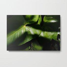 Leaves I Metal Print