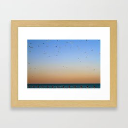 Seagulls Over Lake Michigan Framed Art Print