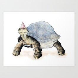 Tortoise Illustrational  Art Print
