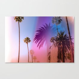 Sunshine and Palm Trees Canvas Print
