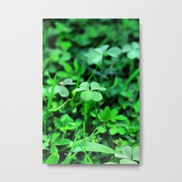 Clover Stay Metal Print