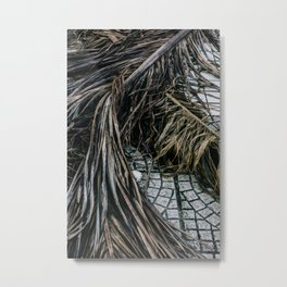 Palm Tree Leaf Metal Print