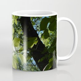 Sunlight Canopy IV Coffee Mug