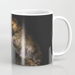 Monkeys Grooming Coffee Mug