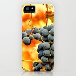 Grape Vines in Autumn iPhone Case