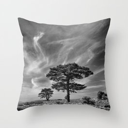 Black Pine At 2000 Meters. Cazorla Natural Park. Throw Pillow