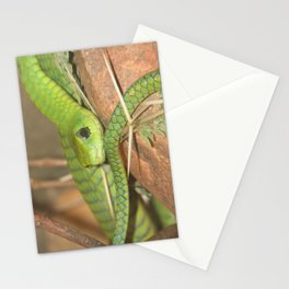 Green viper Stationery Cards