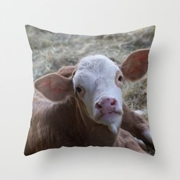 Cutie Calf Throw Pillow