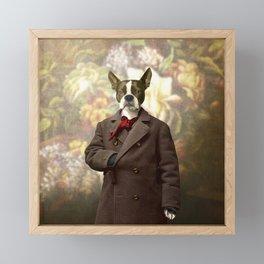 Barney the Boston Terrier in the Arboretum Framed Mini Art Print