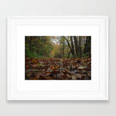 A quiet walk. Framed Art Print