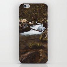 Cool & fresh iPhone & iPod Skin