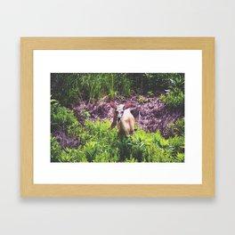 A Deer in the Bush Framed Art Print