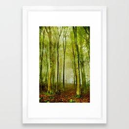 Foggy fall in forest Framed Art Print