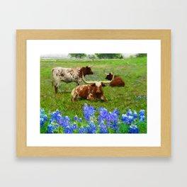 Daniel Adams Texas Longhorns Framed Art Print