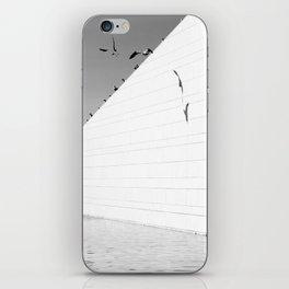 Shadows birds iPhone Skin