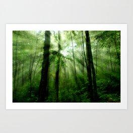 Joyful Forest Art Print