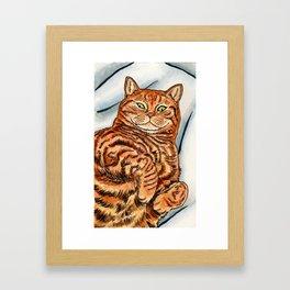Ginger Cat Framed Art Print
