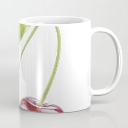 Cherry fruit plants genus Prunus fleshy drupe fruit Coffee Mug