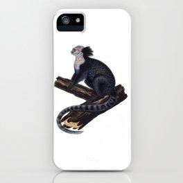 Tufted-Ear Marmoset iPhone Case