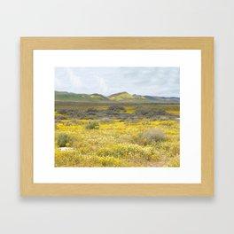 Mega Bloom Central California, Carrizo Plain National Monument Framed Art Print
