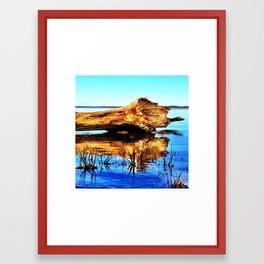 Reflecting Nature Framed Art Print