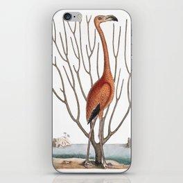 Flamingo 1731 iPhone Skin