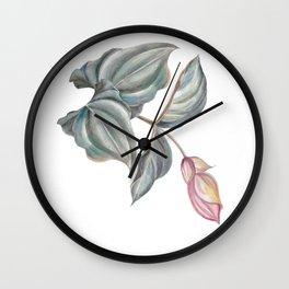 branch of pink Medinilla Magnifica Wall Clock