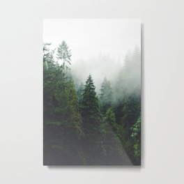 372. Cloudy Capilano forest, Vancouver, Canada Metal Print