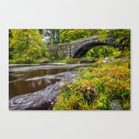 beaver Canvas Prints featuring Beaver Bridge by Adrian Evans