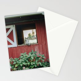 Horse in the Barn Stationery Cards